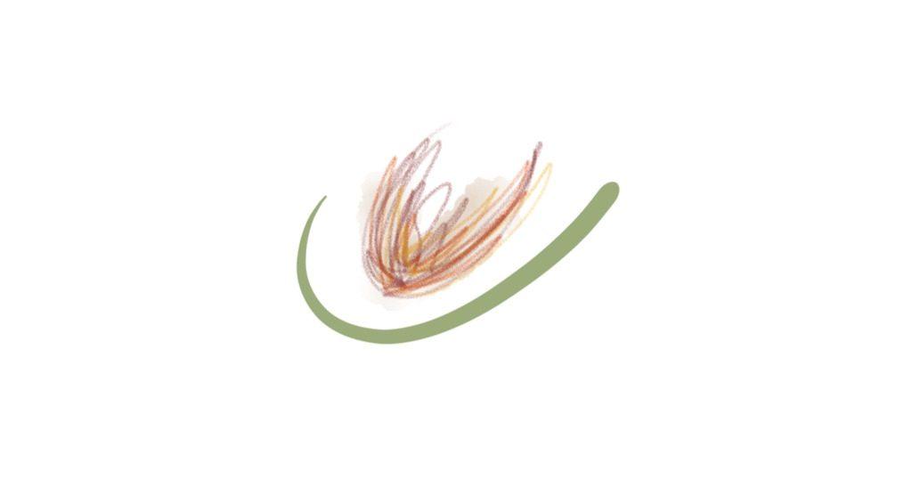 fallen-seeds