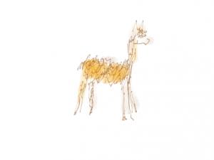 It's an alpaca